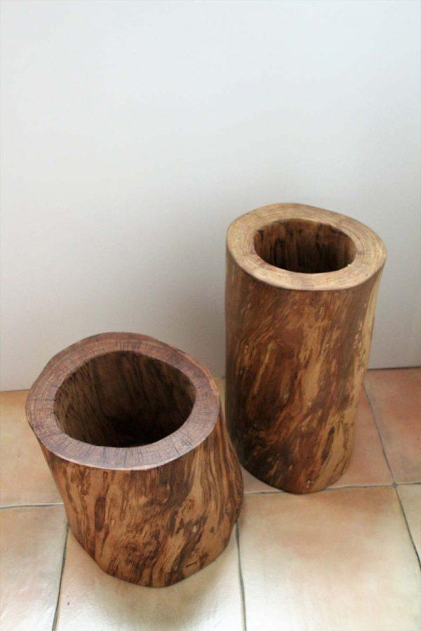 Tronco hueco de madera de castaño